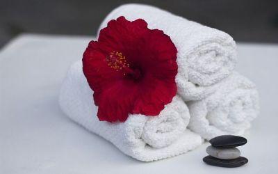 Certificados de profesionalidad hostelería | Camarera de pisos, en continua demanda