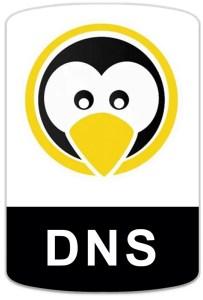 badge-linux-dns Curso de Servidor DNS