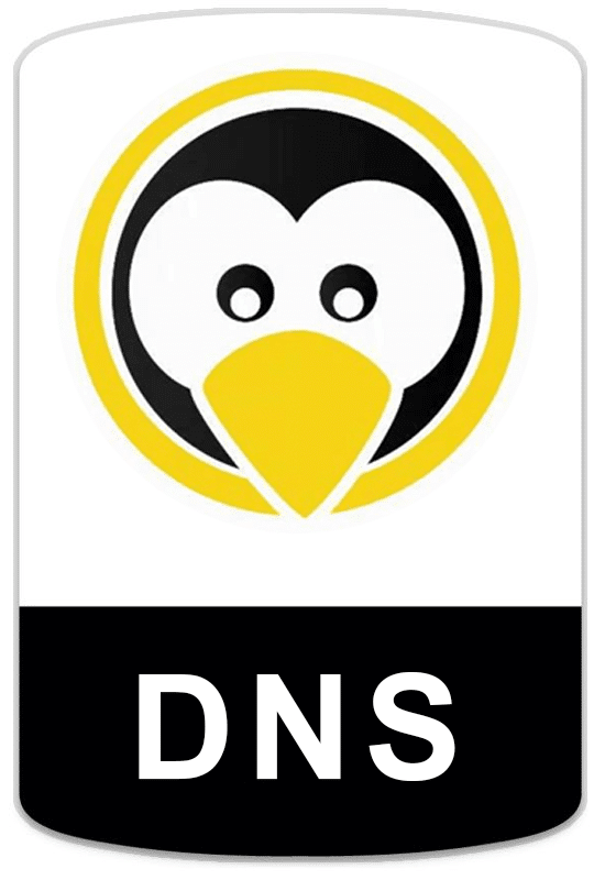 badge-linux-dns Cursos