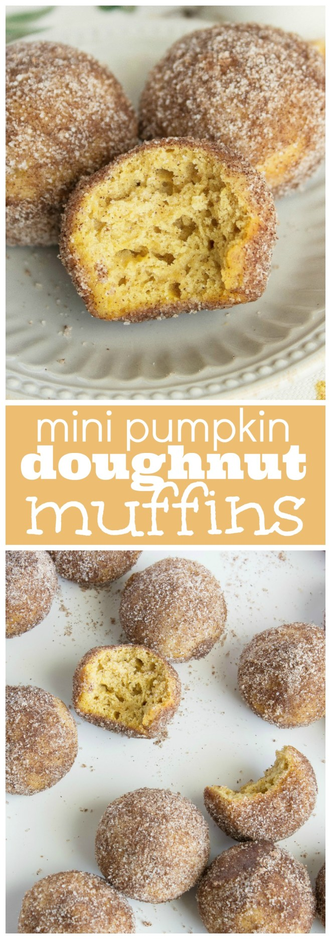 mini-pumpkin-doughnut-muffins