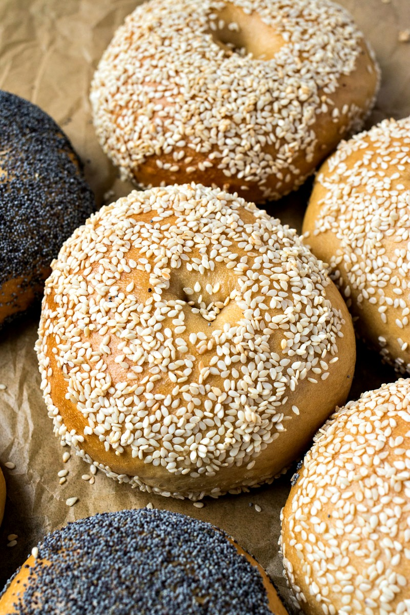 Homemade Bagels topped with seasame seeds