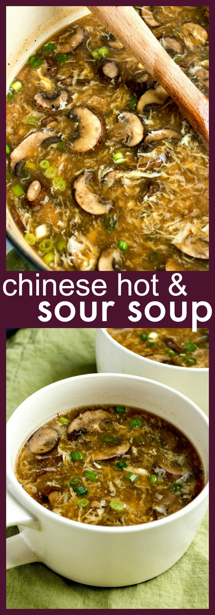 Chinese Hot & Sour Soup photo collage