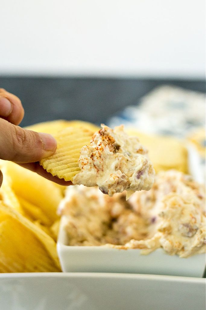 photo of healthy onion dip on a chip