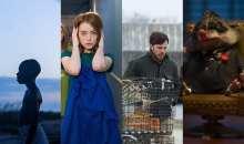 Nejlepším filmem roku 2016 se stal La La Land …, pardon, špatná obálka, Moonlight.