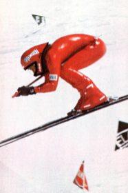 1975 - Meynet