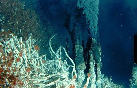 https://i2.wp.com/www.cesam.ua.pt/images/hydrothermal-vent.jpg