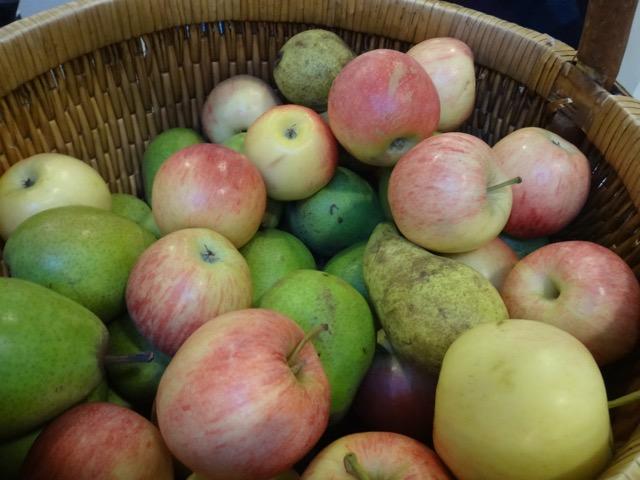 Fruta fresca diaria y no de lata.