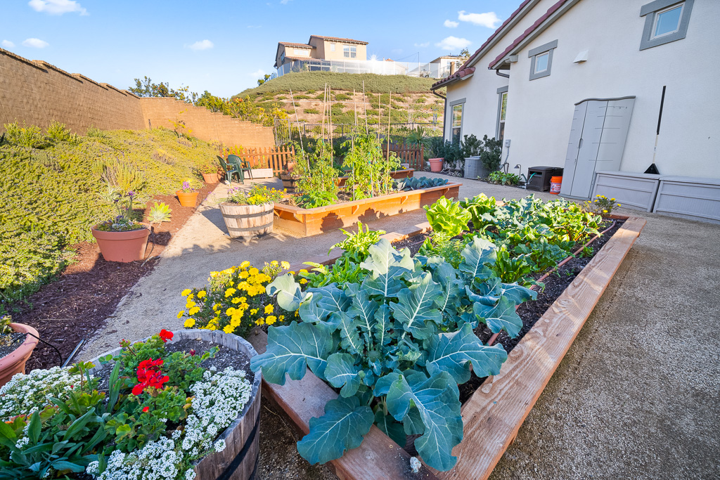 Garden Rancho Mission Viejo