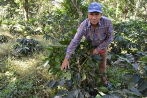 CESPPO Comercio Justo El Salvador (52)