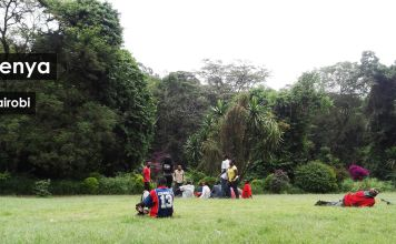 Gezi Rehberi Kenya Nairobi 1