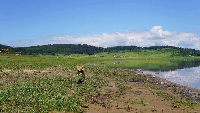 Bulgaristan Batak Gölü Yeni Cesur Gezginimiz YuKi  Bulgaristan | Batak Gölü Gezi Rehberi Bulgaristan Batak G  l   Yeni Cesur Gezginimiz YuKi