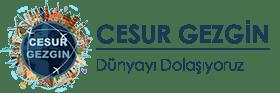 Hakkımızda Cesur Gezgin Logo 280