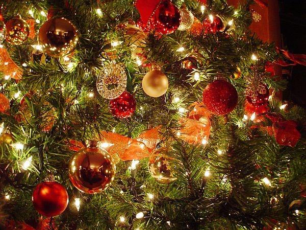 O Universo em uma Árvore de Natal