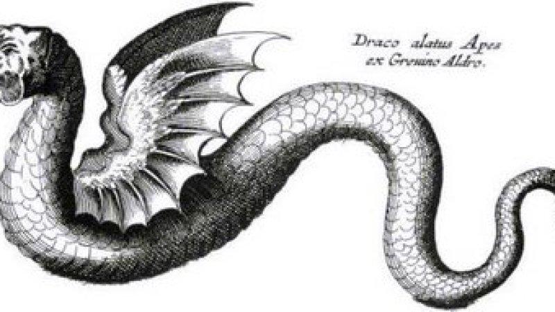 A verdade sobre os monstros imaginários