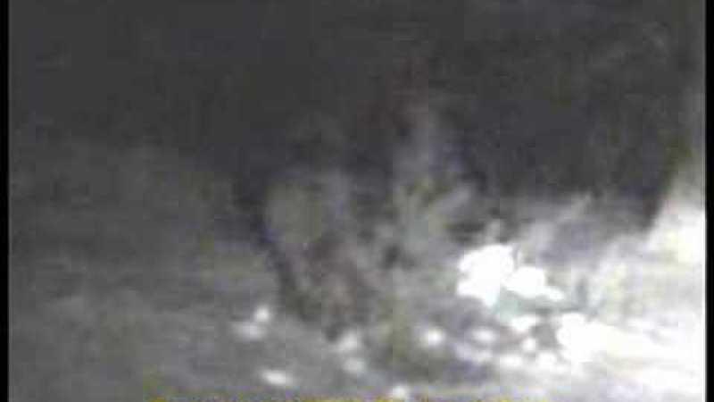 Vídeo do Sasquatch de Ely