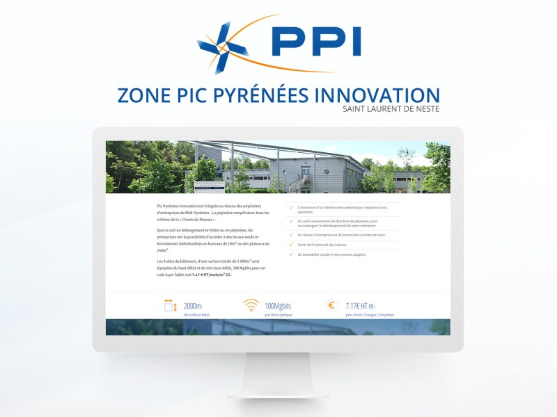 site internet zone ppi
