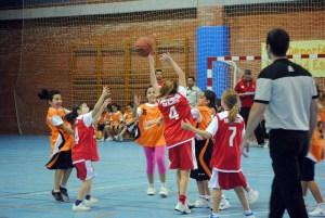 basket26