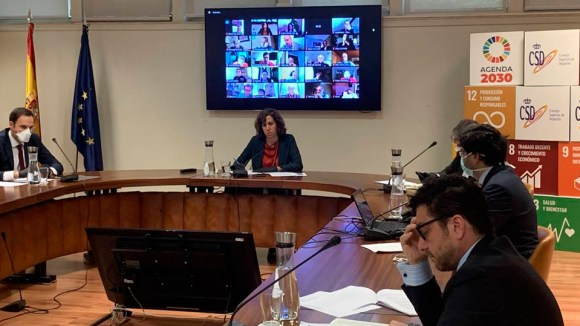 Irene Lozano, durante la reunión telemática con los presidentes de las Federaciones Deportivas