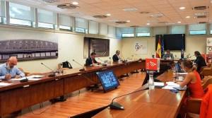El director general del CSD se ha reunido de forma telemática con los representantes de las Comunidades Autónomas