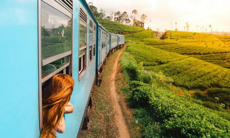 ella_train_srilanka