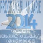 Programari Ianuarie 2014