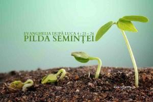 marcu-4-23-26-pilda-semintei-i-lipsa-de-autoritate-in-cuvantul-rostiti