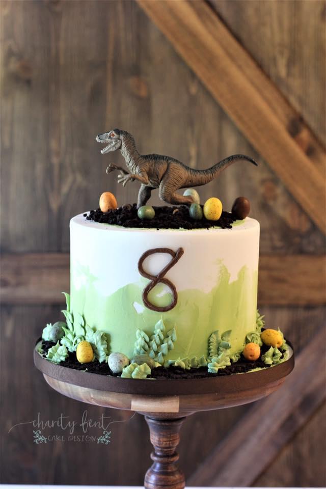 Dinosaur Birthday Cake Charity Fent Cake Design