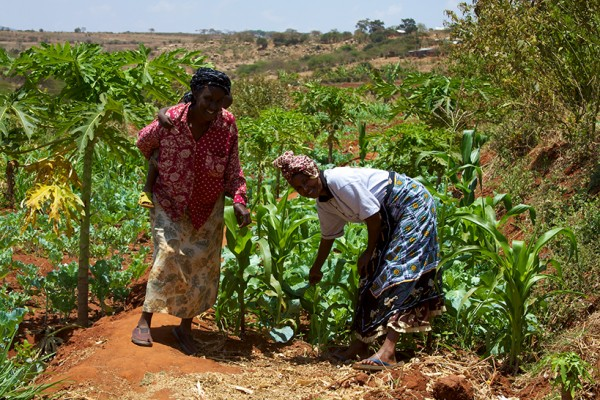 Women from the Mbini Self-Help Group showing off the fields