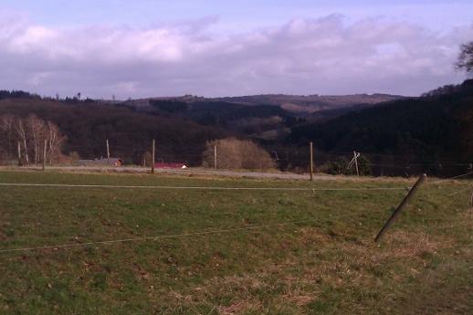 image k-westerwald01-jpg
