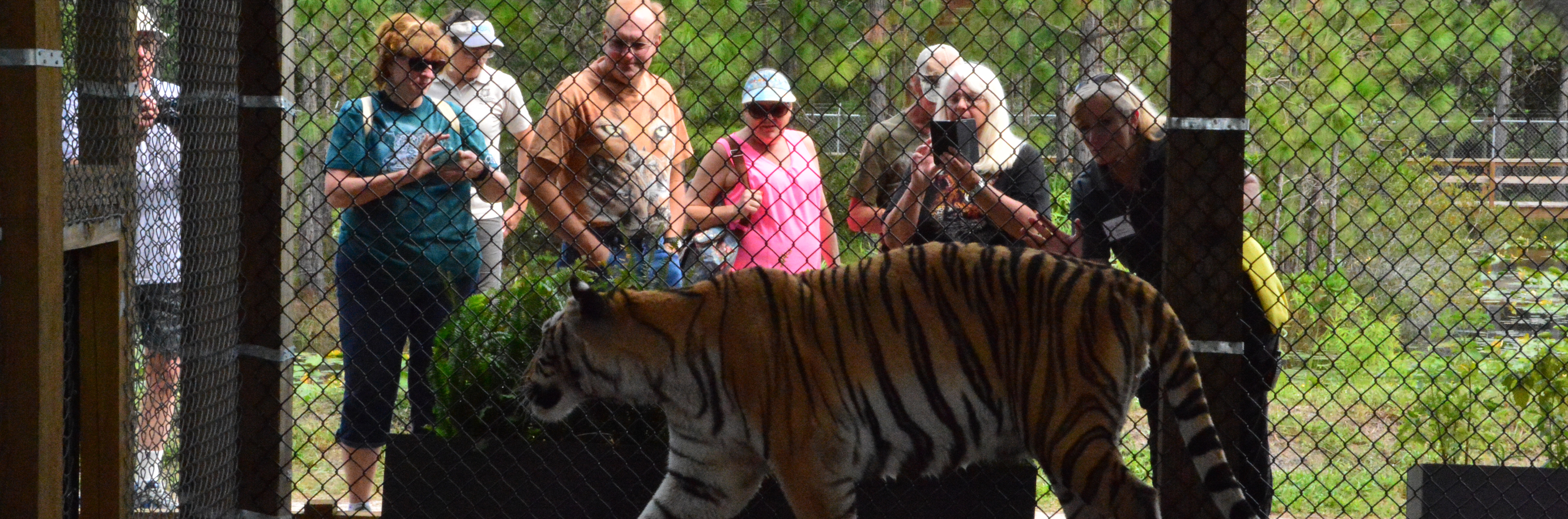 Central Florida Animal Reserve Tour