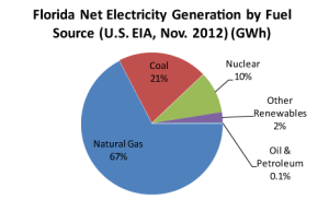 Florida Net Electricity Generation by Fuel Source