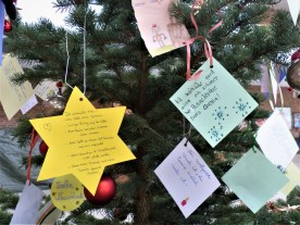 Weihnachtsbaum - 7