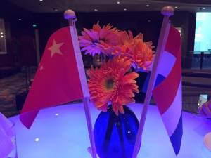 首页 Flags CN NL 300x225