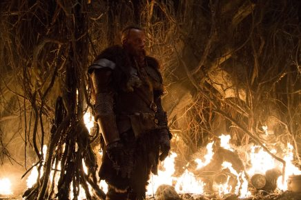 The Last Witch Hunter (Movie) Review 1