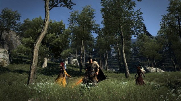 Dragon's Dogma: Dark Arisen (PC) Review