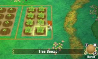 Story of Seasons: Return to Popolocrois (3DS) Review 1