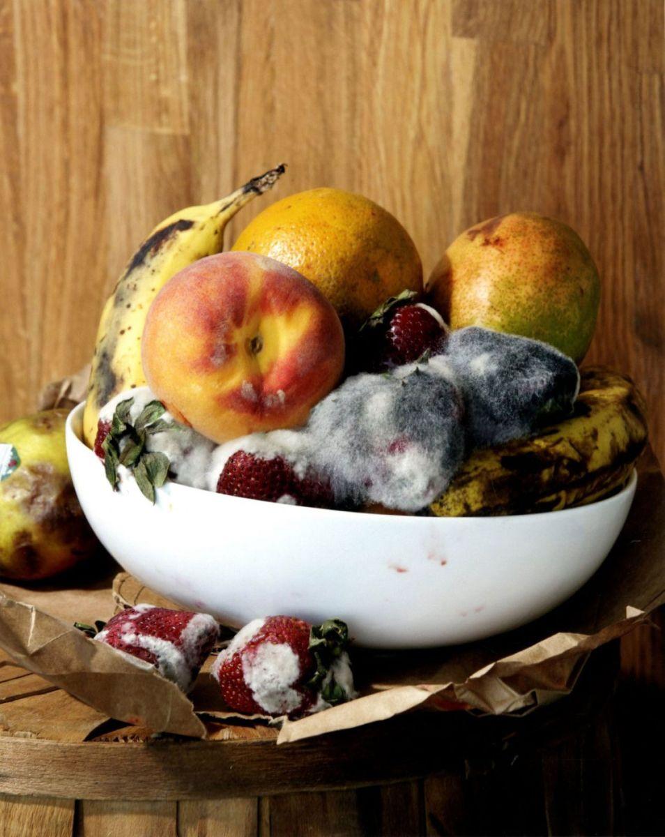 Comment Eliminer Les Moucherons Des Fruits pourquoi et comment se débarrasser des moucherons dans la
