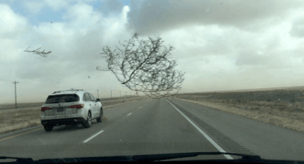 Crazy Texas Tumbleweed and Duststorm During Family Road Trip Video
