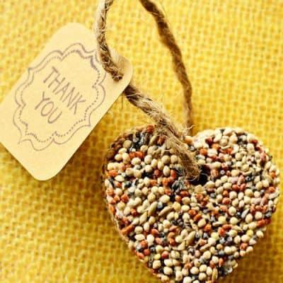 Birdseed Wedding or Party Favors – DIY Craft Idea