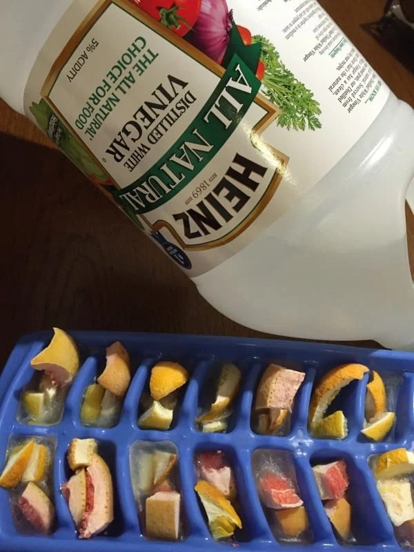 DIY Garbage Disposal Tablets homemade in ice trays with vinegar