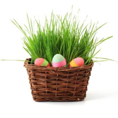 Ideas for Non-Candy Easter Egg Fillers and Easter Basket Ideas