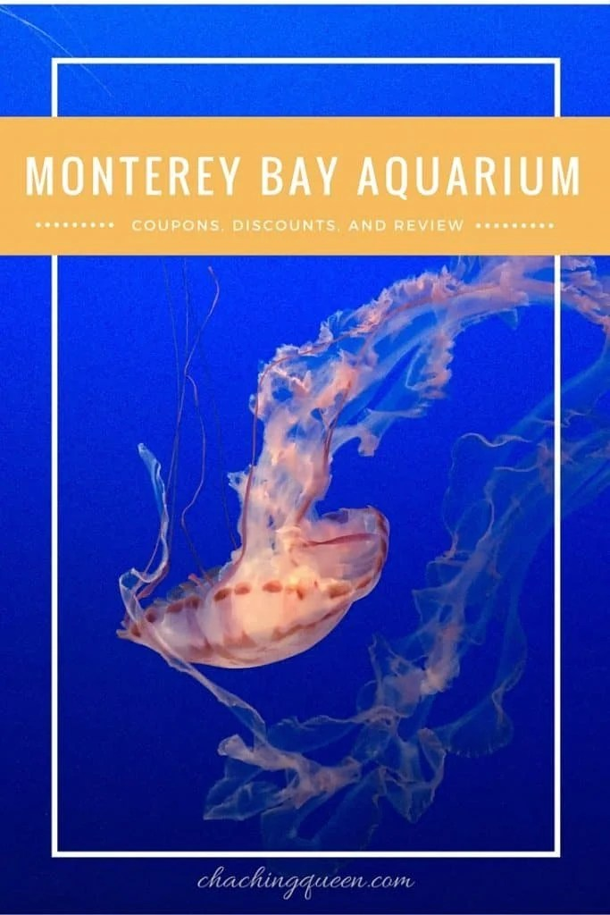Monterey Bay Aquarium Coupons, Discount, and Review