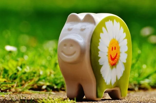piggy-bank-smiley-funny-good-mood-161010