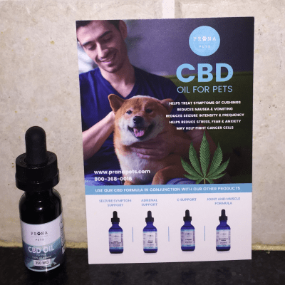 CBD Oil Available for Pets