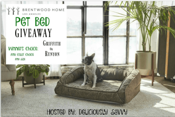 Brentwood Home Pet Bed Giveaway january and february 2018 blog giveaway