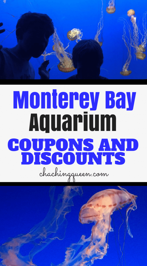 Monterey Bay Aquarium Coupons, Monterey Aquarium Discounts, Free Tickets, and Review