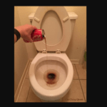 pouring coke into a toilet to clean it