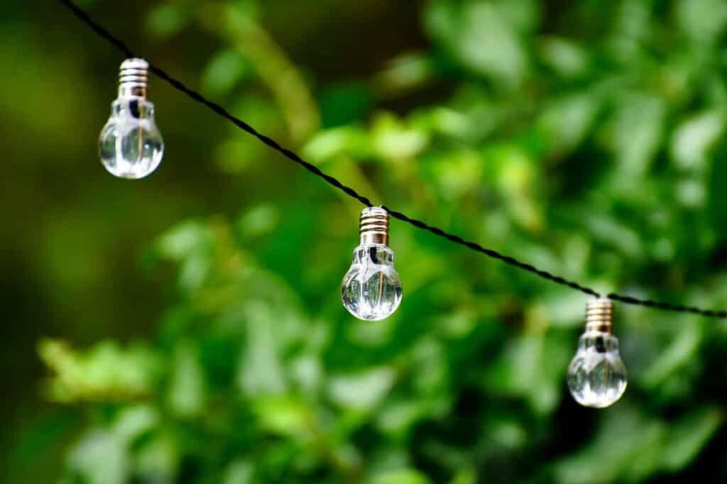 light bulbs on a string