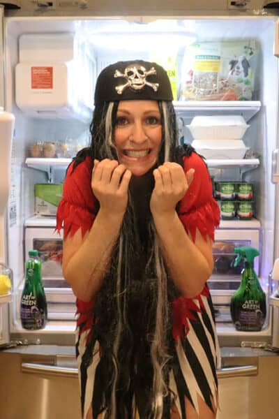 rachel pirate costume scary messy refrigerator art of green
