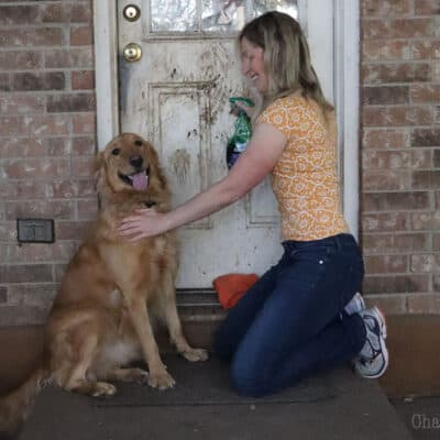 How to Keep the House Clean When You Have Pets  + Giveaway for $100 H-E-B Gift Card and Art of Green Products